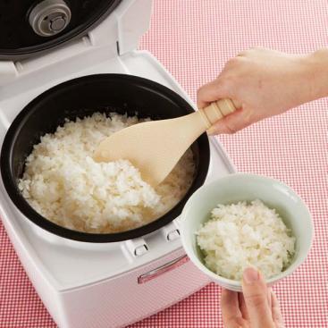 Rice Paddle Cat's Paw 2
