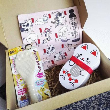 Cat-lover-gift-box-1